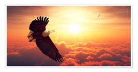 Premium poster Fish Eagles flying above clouds
