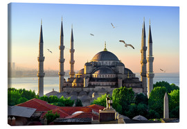 Canvas print  The blue mosque in Istanbul