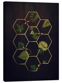 Canvas print  bees in space - Sybille Sterk
