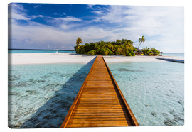 Canvas print  Jetty to tropical island, Maldives - Matteo Colombo