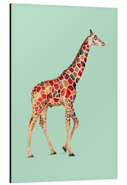 Aluminium print  COLORED GIRAFFE - Jonas Loose