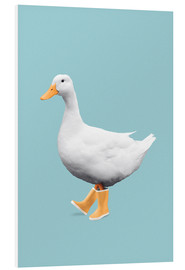 Foam board print  DUCK - Jonas Loose