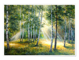 Premium poster Sunlight in the green forest