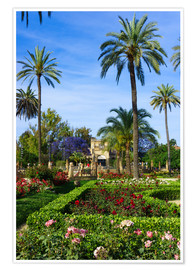 Premium poster  Gardens of the Museum of Seville