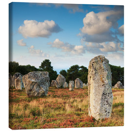 Canvas print  Megaliths in Carnac