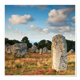 Premium poster  Megaliths in Carnac