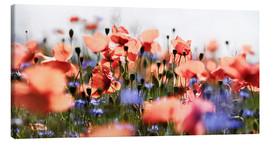 Canvas print  Poppies and Cornflowers - Lichtspielart
