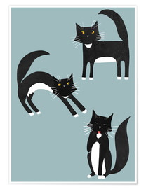 Premium poster  Black cats with white paws - Nic Squirrell