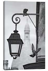 Canvas print  Montmartre pigeons with Sacre Coeur