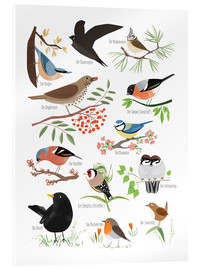 Acrylic print  Garden birds (German) - Sandy Lohß