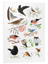Foam board print  Garden birds (German) - Sandy Lohß