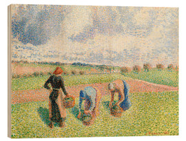 Wood print  Paysannes ramassant of the herb - Camille Pissarro