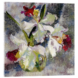 Acrylic print  Orchids II - Augusto Giacometti