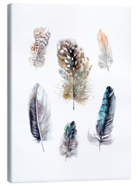 Canvas print  Feathers collection - Verbrugge Watercolor