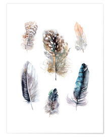 Premium poster  Feathers collection - Verbrugge Watercolor