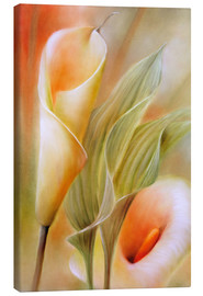 Canvas  calla - Annette Schmucker