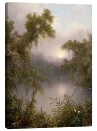 Canvas print  South American River - Martin Johnson Heade