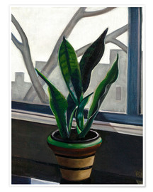 Premium poster  Plant on a windowsill - Prudence Heward