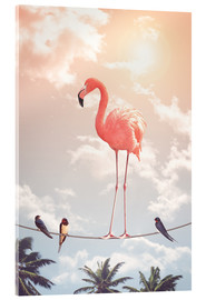 Acrylic print  Flamingo and Friends - Jonas Loose