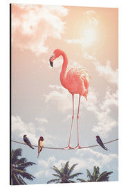 Aluminium print  Flamingo and Friends - Jonas Loose