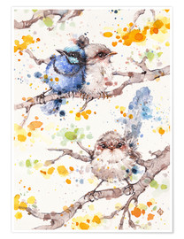 Premium poster  Family Life (fairy Wren) - Sillier Than Sally