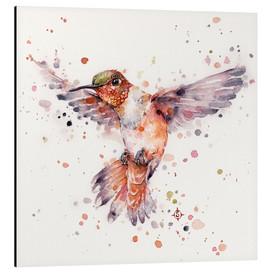 Aluminium print  Rufous the hummingbird - Sillier Than Sally