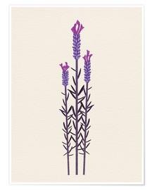 Premium poster butterfly lavender