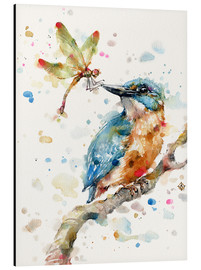 Aluminium print  Interesting relationships (kingfisher and dragonfly) - Sillier Than Sally