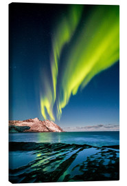 Canvas  Aurora Borealis in Northern Norway II - Sascha Kilmer