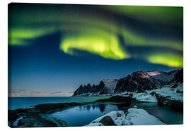 Canvas  Aurora Borealis above the island of Senja (Northern Norway) - Sascha Kilmer