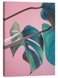 Canvas  Sweet pink monstera leaves - Emanuela Carratoni