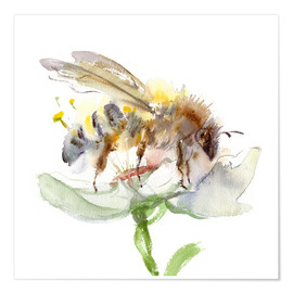 Premium poster  Honey bee - Verbrugge Watercolor