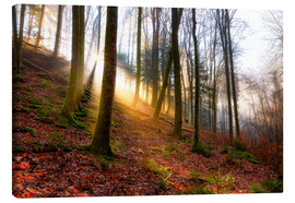 Canvas print  Sunrise in the Karlstalschlucht - Reemt Peters-Hein