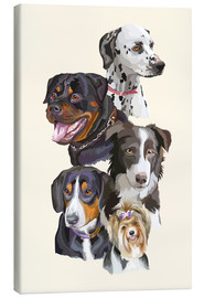 Canvas  Dog breeds