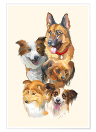 Premium poster Dog breeds portrait