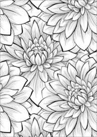 Colouring poster  Petal detail