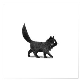 Premium poster Little black cat