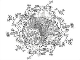 Colouring posters  Sleeping cat