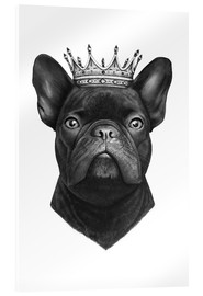 Acrylic print  King French bulldog - Valeriya Korenkova
