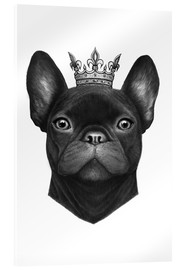 Acrylic print  Queen French Bulldog - Valeriya Korenkova