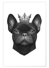 Premium poster Queen French Bulldog