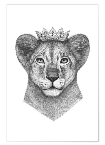 Poster The lion prince