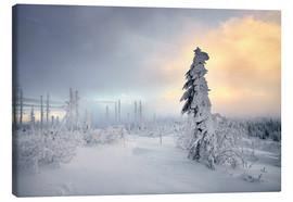 Canvas print  Dreisessel mountain winter - Richard Grando