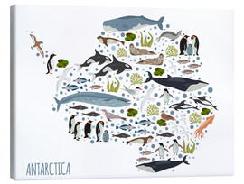Canvas  Critters of the Antarctic - Kidz Collection