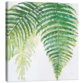 Canvas print  Fern leaves III - Chris Paschke