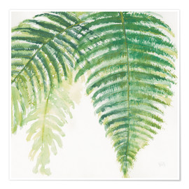 Premium poster  Ferns III Square - Chris Paschke