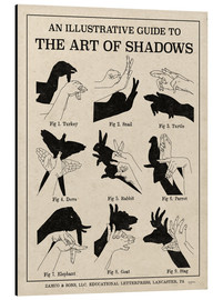 Alu-Dibond  The Art of Shadows - Mary Urban