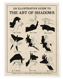 Premium poster  The Art of Shadows - Mary Urban