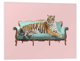 Foam board print  Lazy Tiger - Robert Farkas