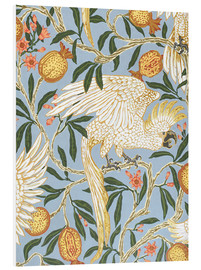 Foam board print  Cockatoo and Pomegranate - Walter Crane